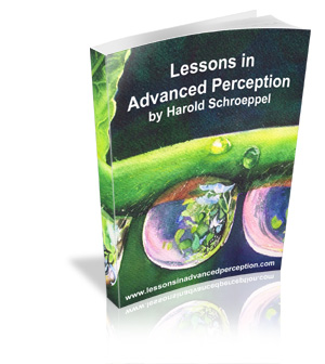 Lessons in Advanced Perception | Harold S Schroeppel